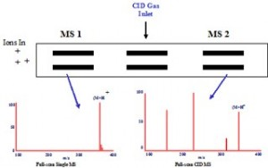LCMS_Courses_CID_Mass_Spectra_Image